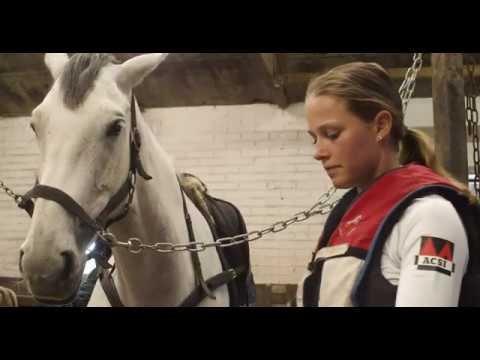 YouTube video - Janneke Boonzaaijer- Eventing